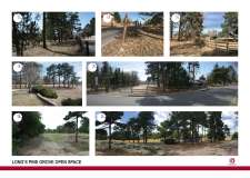 Long's Pine Grove Existing Conditions Images Sheet 1